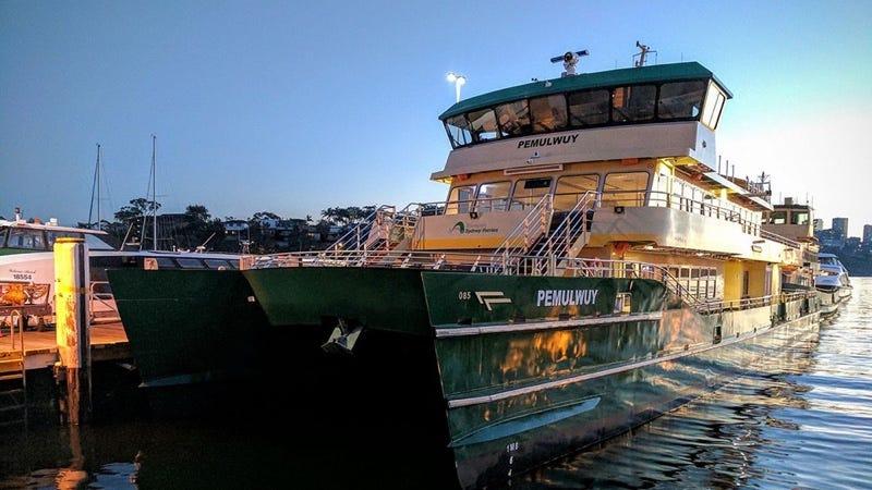 Uno de los ferries de Sydney que acompañarán a Ferry McFerryface en sus labores. Imagen: Ministerio de Transporte de NSW