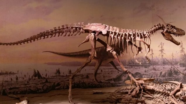 Dinosaurs Like T. Rex Were More Tyrannical Than We Realized, New Research Suggests