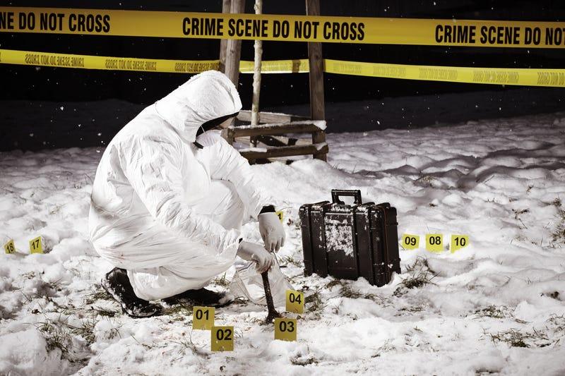Se busca: mujer anónima cuyo ADN se encuentra en más de 40 escenas de crímenes en Europa