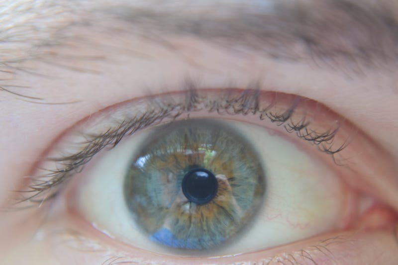 Illustration for article titled Eye