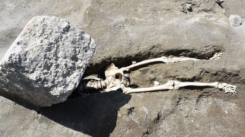 The skeletal remains of the Pompeii victim.