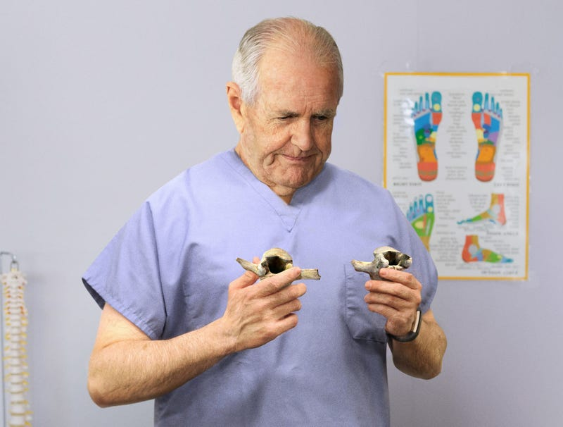 Illustration for article titled Chiropractor Scrambling To Put Vertebrae Back In Right Order Before End Of Session