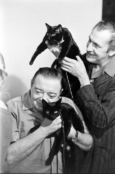 Illustration for article titled Peter Lorre and Vincent Price with friends