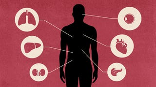 Illustration for article titled How We'll Finally Put An End To Organ Donation Shortages