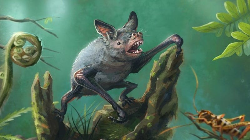 photo image Discovery of Extinct Burrowing Bat Tells Mysterious Story About New Zealand