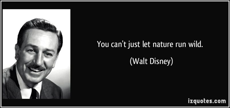 8 Walt Disney Quotes That Are Actually Fake