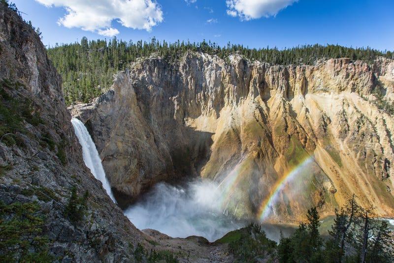 Illustration for article titled Ahora puedes vivir en el espectacular parque de Yellowstone a cambio de trabajar media jornada