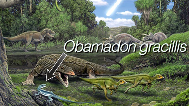 Illustration for article titled Barack Obama just had a prehistoric lizard named in his honor. Can you guess why?