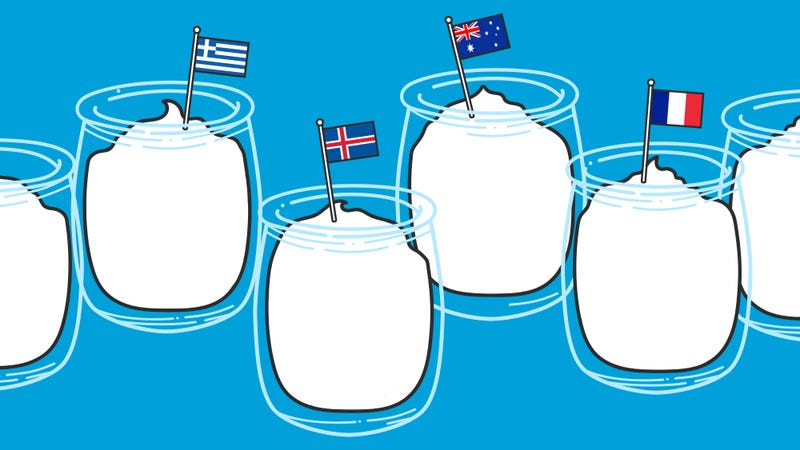 Illustration for article titled What's the difference between all those international yogurts?