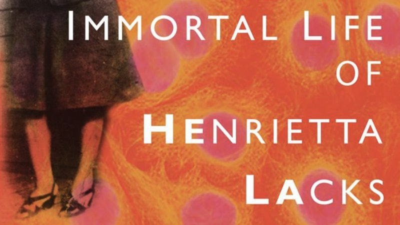 Illustration for article titled Rebecca Skloot, author of The Immortal Life Of Henrietta Lacks