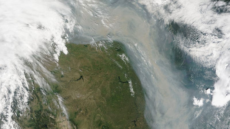 Illustration for article titled Smoke From Canadian Wildfires Is Pouring Into the US Like a River