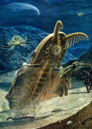 Illustration for article titled Giant prehistoric shrimp had the weirdest mouth of the Cambrian period