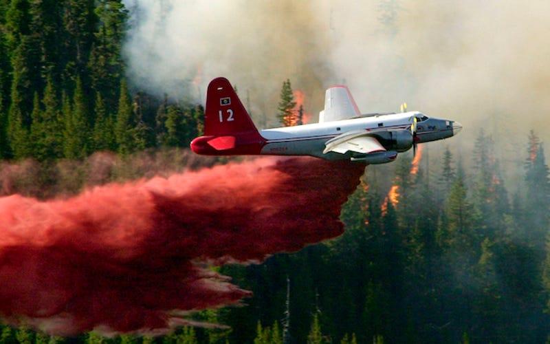Resultado de imagen para OLD AIRCRAFT WATERBOMBERS USA