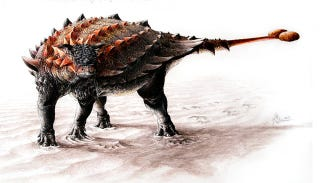 Illustration for article titled What Did the Ankylosaurus Look Like Before It Got This Club Tail?