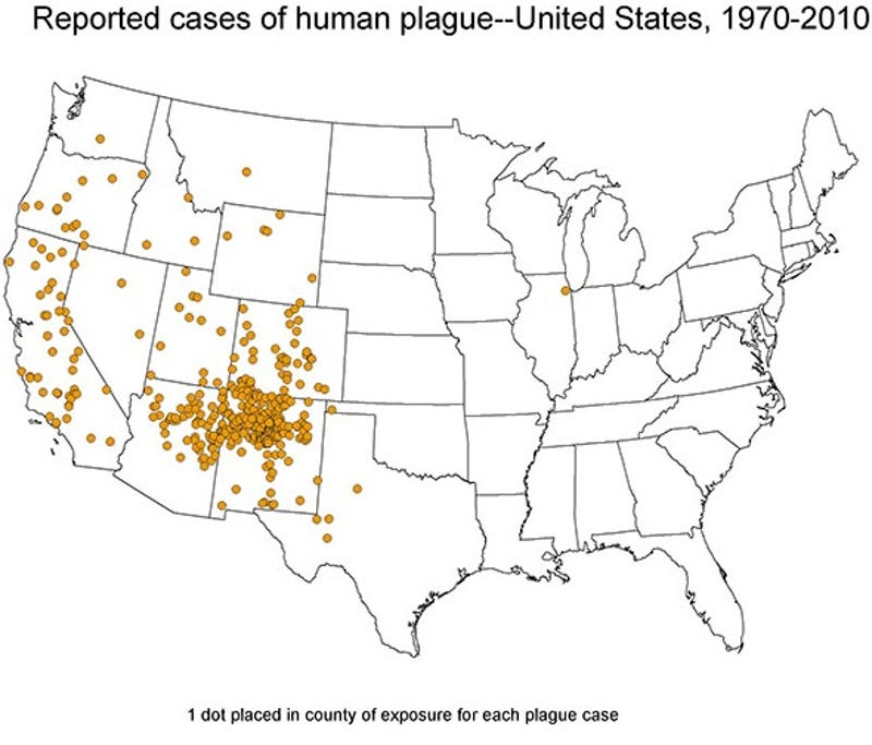 Why People In The United States Are Still Dying From The Bubonic - Human plaque dot map us
