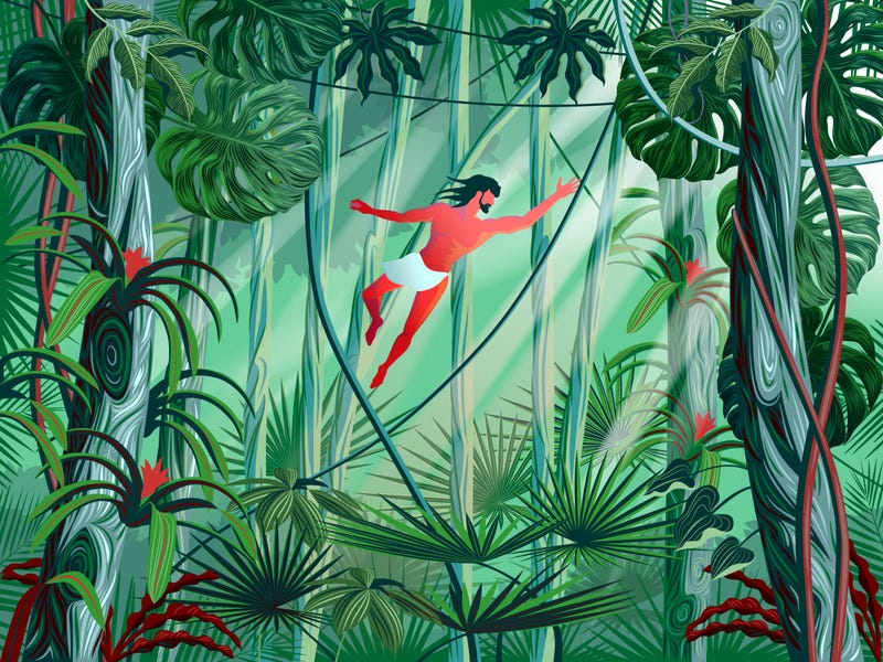 Illustration for article titled NY High School Pulls the Plug on Tarzan Production Amid Concerns That Students Would Be Cast as Apes