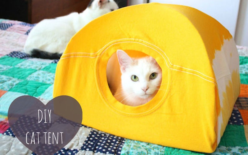 If you have an old t-shirt and a few wire hangers around the house you have everything you need to make this tent for your cat in about ten minutes. & Turn an Old T-Shirt into a DIY Cat Tent