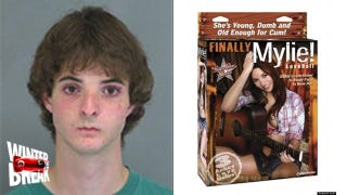 Illustration for article titled This Poor Guy Got Nailed Trying to Steal a Creepy Miley Cyrus Sex Doll