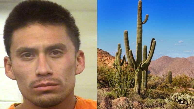 Illustration for article titled Man Gets Drunk, Has Sex In Car, Crashes Car, Hides Behind Cactus