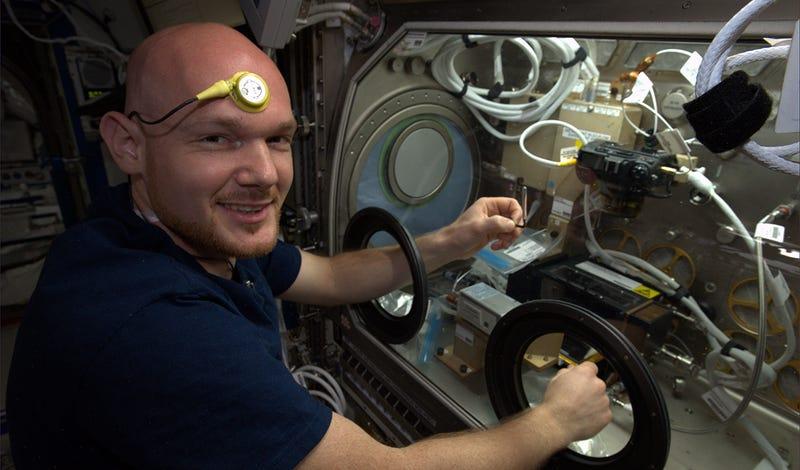Illustration for article titled ¿Qué temperatura corporal tendrías si vivieras en el espacio?
