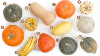 Illustration for article titled Your Go-To Visual Guide For Winter Squash