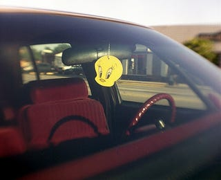 Illustration for article titled Michigan Federal Court Upholds Law Against Rear-View Mirror Tchotchkes