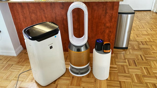 The Best Air Purifiers To Help You Survive Allergy Season