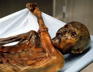 Illustration for article titled 5,000-Year-Old Mummy DNA Part of New Human Extinction Mystery