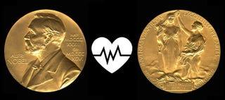 Illustration for article titled Nobel de Medicina 2015 premia a William C. Campbell, Satoshi Ōmura y Youyou Tu