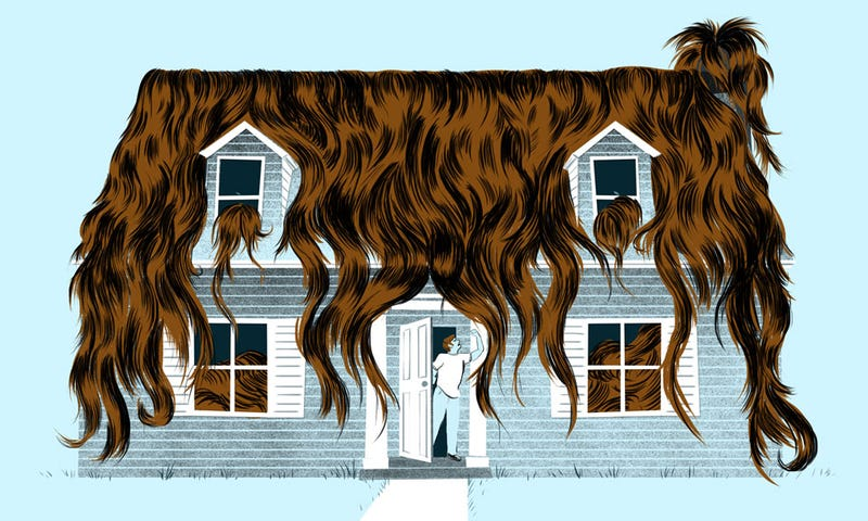 Illustration for article titled My Husband Hates Me Because My Hair Is All Over Our House