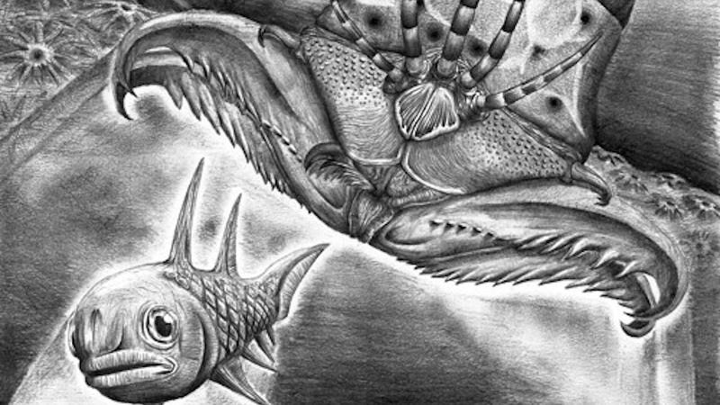 Meet Websteroprion armstrongi, Ancient Monster Worm with Terrifying Snapping Jaws