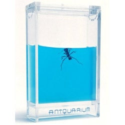 Illustration for article titled Antquarium is a Gel-Filled Ant Farm