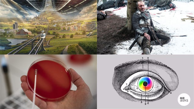 Ancient Psychedelics, Robocall Scams, and Space Bezos: Best Gizmodo Stories of the Week