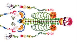 Illustration for article titled Surprising funeral ad makes a lovely skeleton from pressed flowers