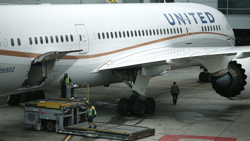 United Airlines Reviewing Death Of Giant Rabbit