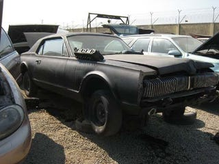 Illustration for article titled Circle Of Automotive Life Nearly Complete: DOTS '67 Cougar Now In Junkyard