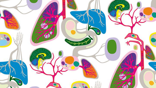 Illustration for article titled What Will The Future Of Cancer Research Look Like?