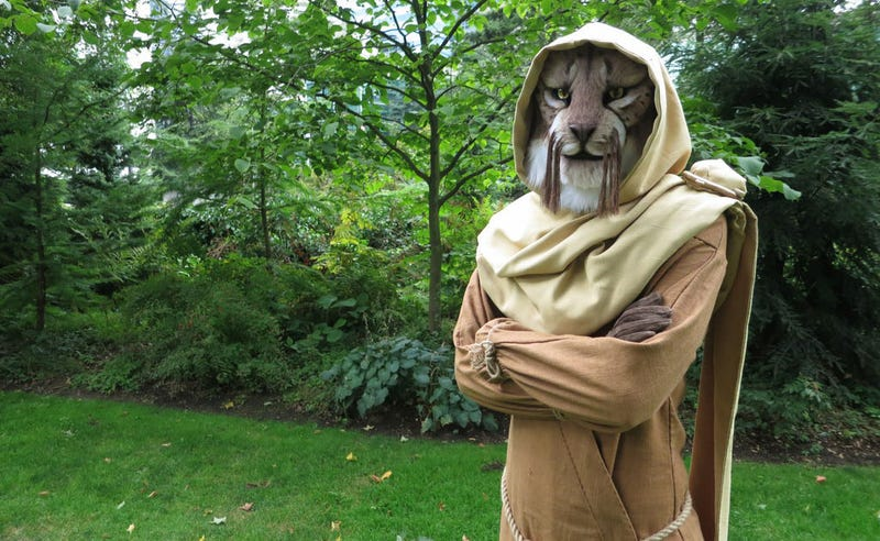 Illustration for article titled Khajiit Has Cosplay If You Have Coin...
