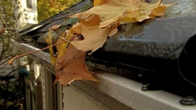 Prevent Leaves From Clogging Your Gutters With These Quick