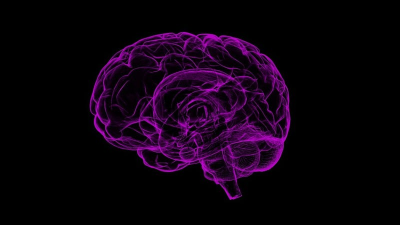 For both young and old, a traumatic brain injury seems to raise the risk of dementia.