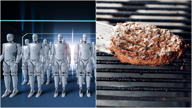 Illustration for article titled Derrrhhhh ex machina:Flippy the burger-flipping robot fired for sucking at job
