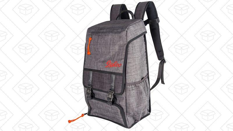 Igloo Daytripper Insulated Backpack | $60 | Amazon