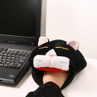 Illustration for article titled PC Gamers, Never Get Cold Hands Again with this Silly Cat