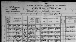 United States census, 1900, Shelby, Ala.FamilySearch.org