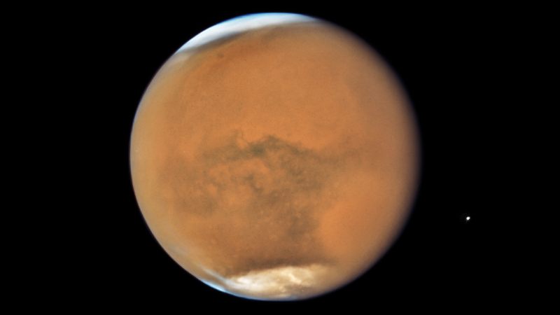 Mars, as imaged by Hubble on July 18. Its moon Phobos is on the right.