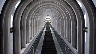 Illustration for article titled Your brain is what makes broken escalators dangerous