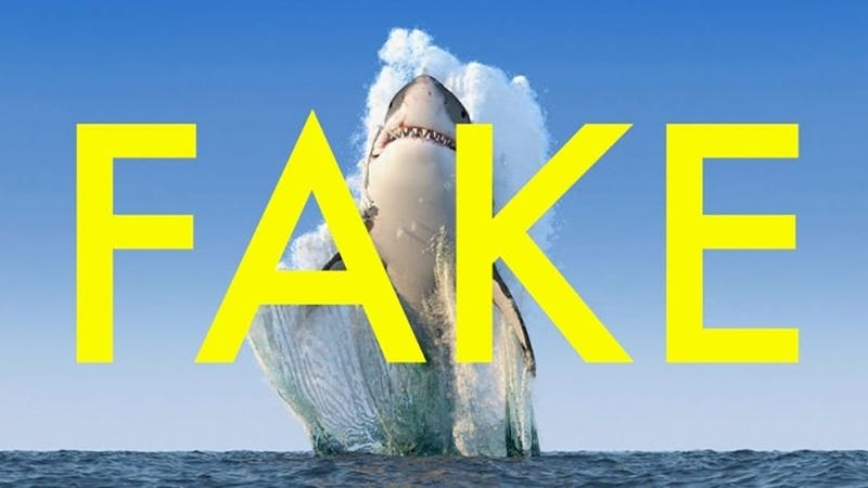 How To Spot Fake Photos On The Web - Photographs might look fake 100 real