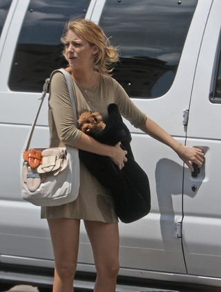 Illustration for article titled Blake Lively To Pee-Stain Making Puppy: Contain Yourself