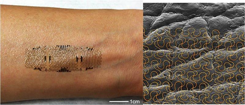 Illustration for article titled Tatuajes electrónicos impresos en la piel medirán tu estado de salud