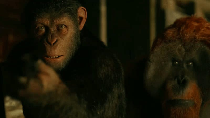 Meet Nova In First War For The Planet Of The Apes Clip